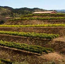 Wineries to visit in the Priorat Region