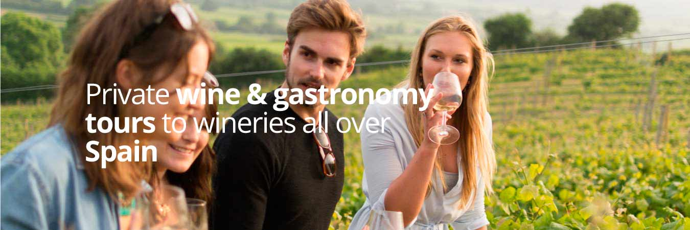 Winery Visits and gastronomy Tours