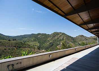 Top Wineries in Priorat